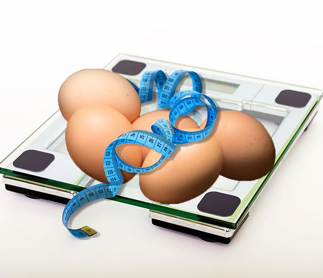 たまごダイエットは効果あり?その前に知っておきたい栄養のこと