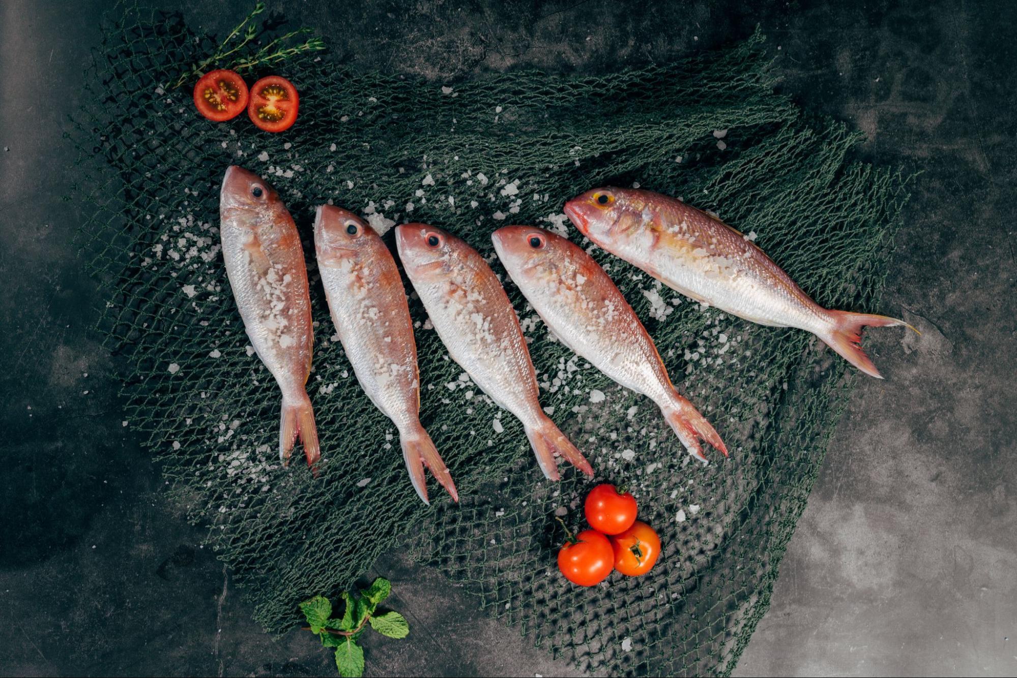 北海道の旬な海産物カレンダー